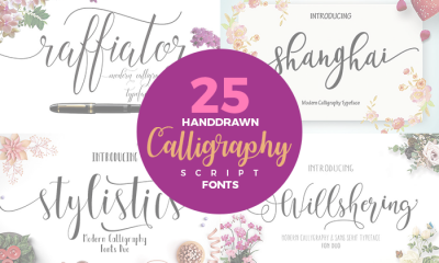 25-Hand-Drawn-Modern-Script-Calligraphy-Fonts