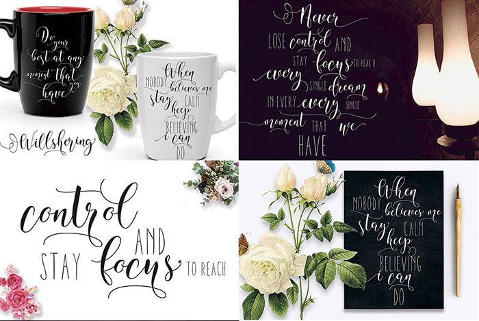 Willshering-Modern-Calligraphy-and-Sans-Serif-Font-1