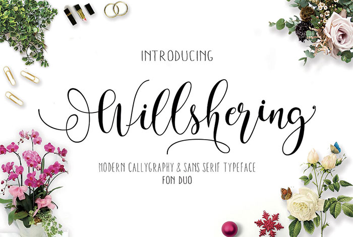 Willshering-Modern-Calligraphy-and-Sans-Serif-Font