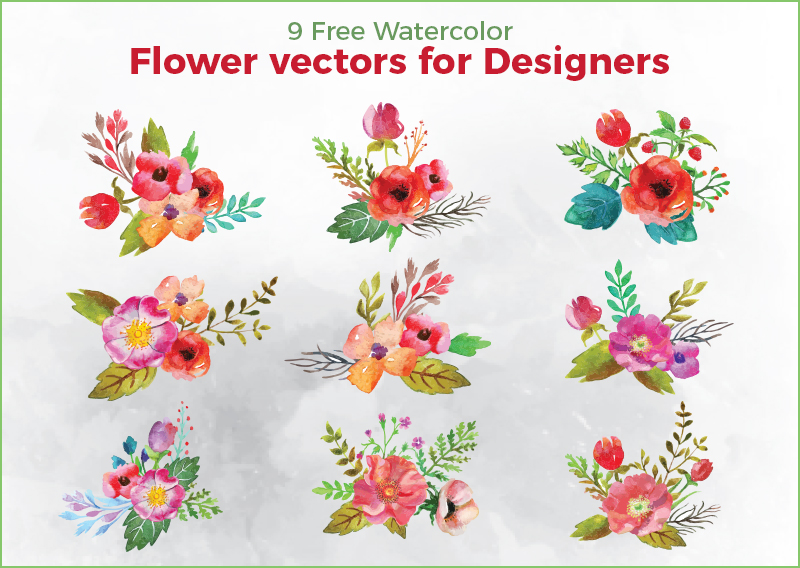 Flower-Vectors-For-Designers