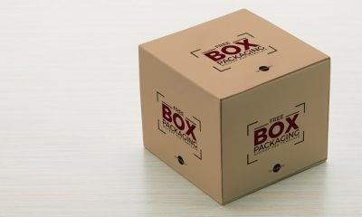 Free-Box-Packaging-PSD-Mockup