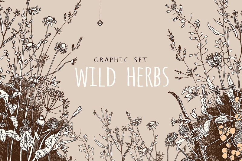 graphic-set-wild-herbs