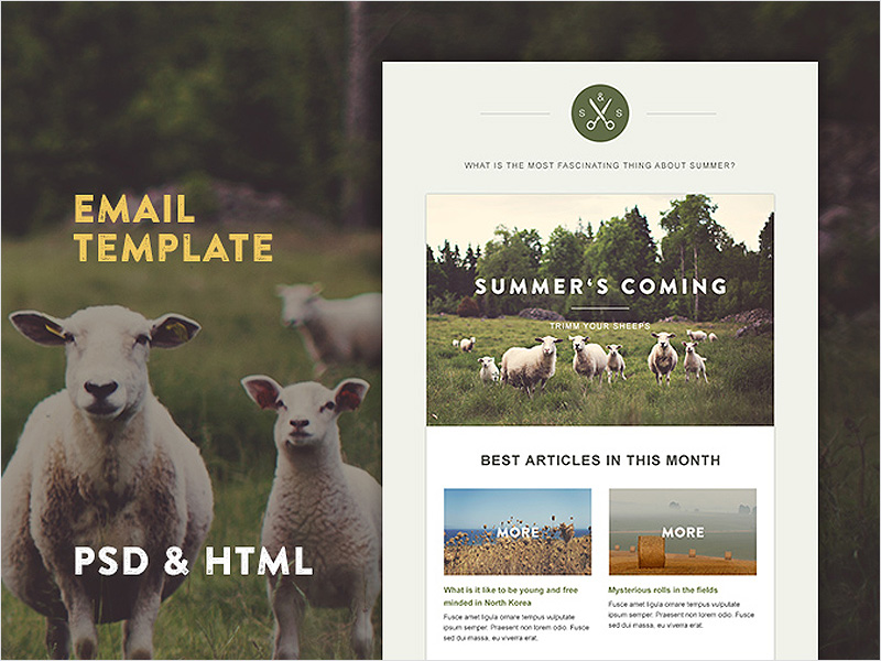 Free-Green-Village-Email-HTML-&-PSD-Template