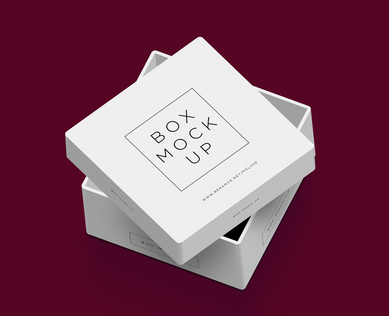 Packaging-Box-Mockup-1