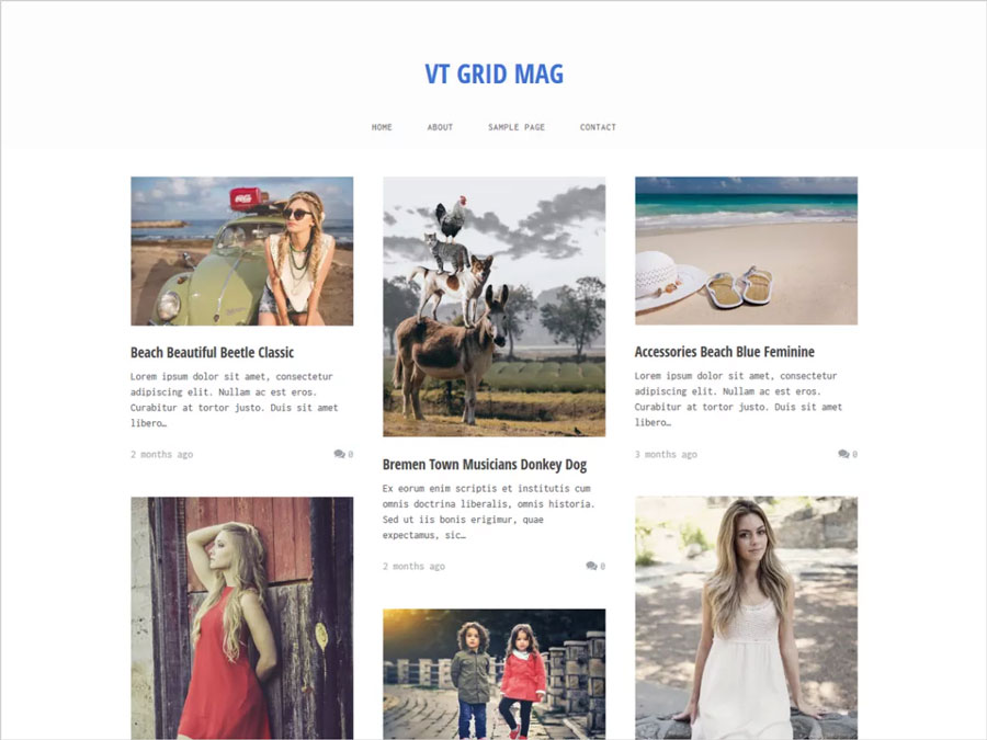 VT-Grid-Mag-Clean,-Minimalistic-and-Responsive-WordPress-Theme
