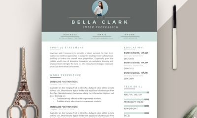 Resume-Design-Template-For-Professionals