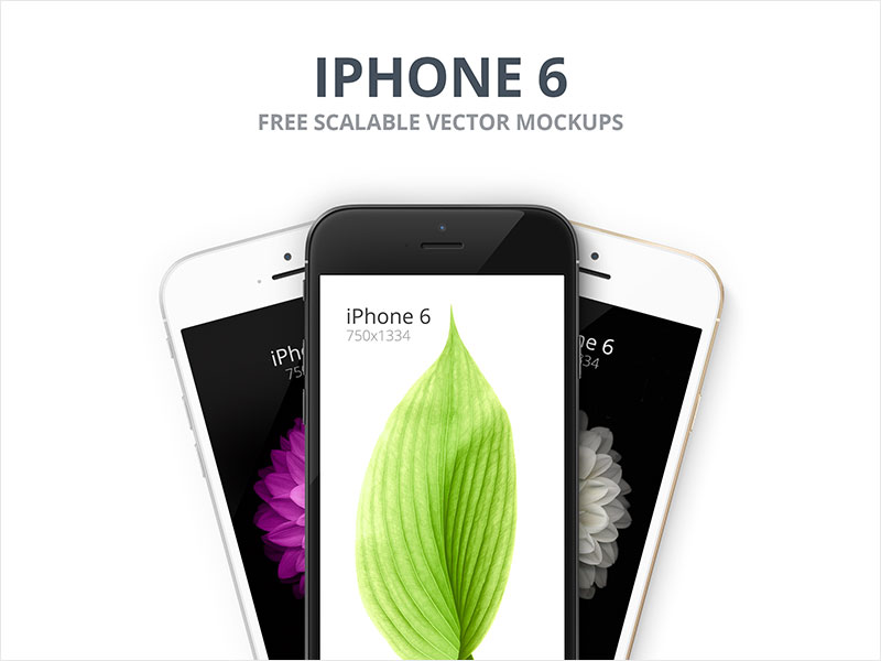 iPhone-6---Scalable-Mockups-4.7'