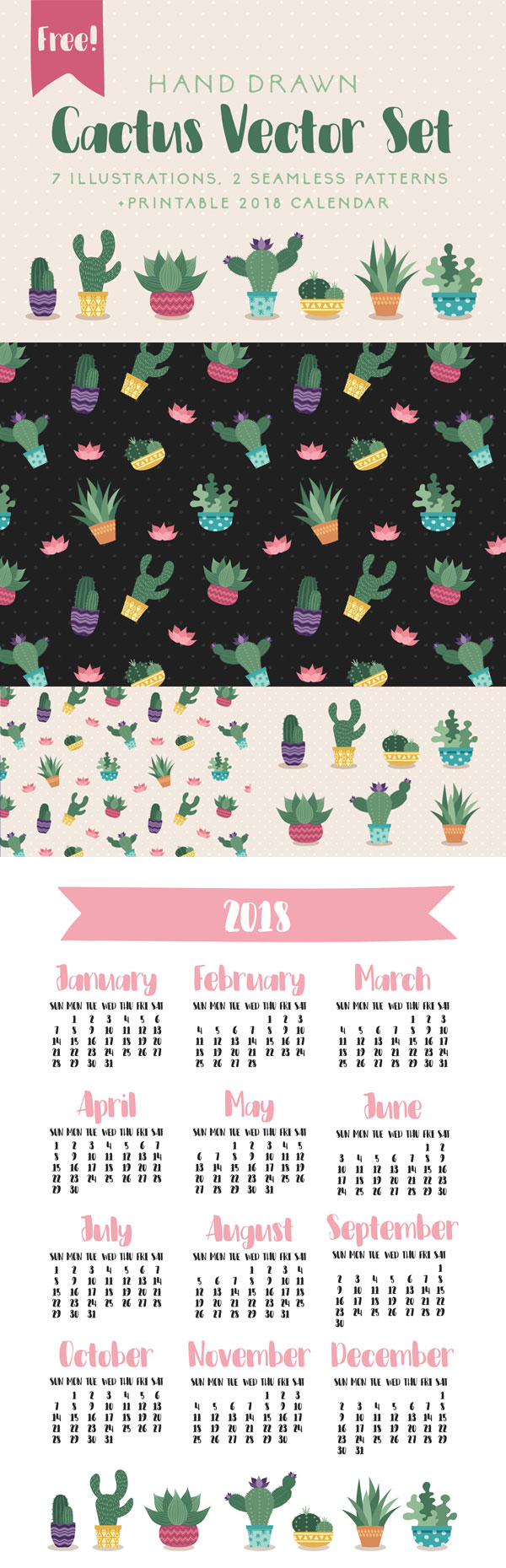 Free-Ai-Hand-drawn-Cactus-Vector-Set-With-7-Illustrations,-2-Seamless-Patterns-&-2018-Printable-Calendar