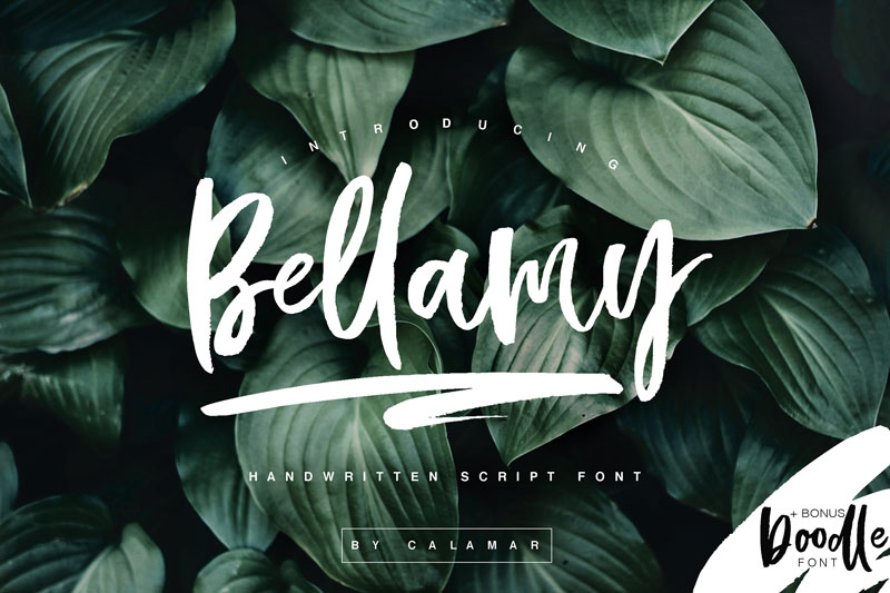 Free-Hand-Drawn-Calligraphic-Bellamy-Script-1