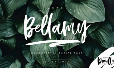 Free-Hand-Drawn-Calligraphic-Bellamy-Script