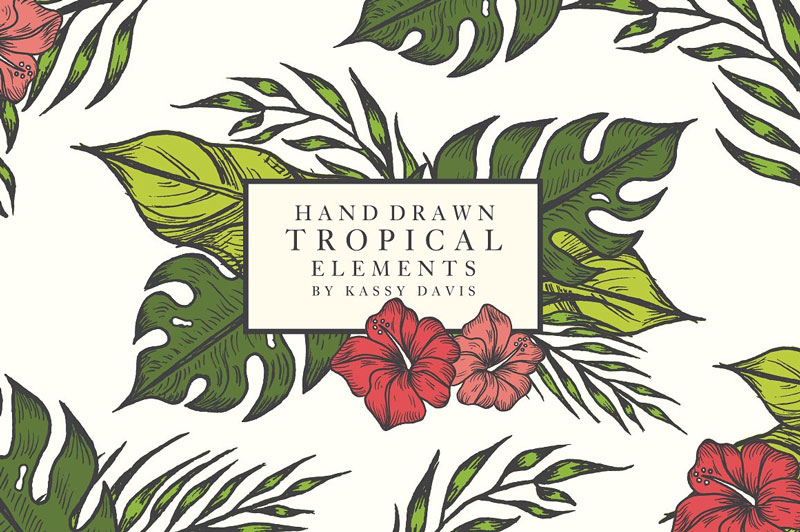 Free-Hand-Drawn-Tropical-Vector-Graphics-Elements-2018