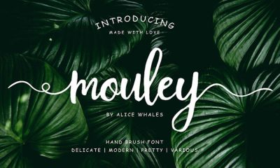 Free-Mouley-Script-Demo-2018-For-Designers