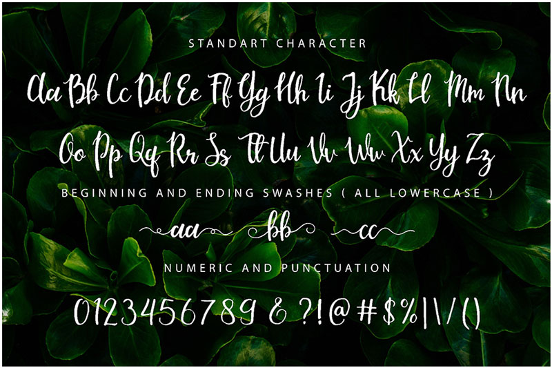 Free-Mouley-Script-Demo-2018-For-Designers-6