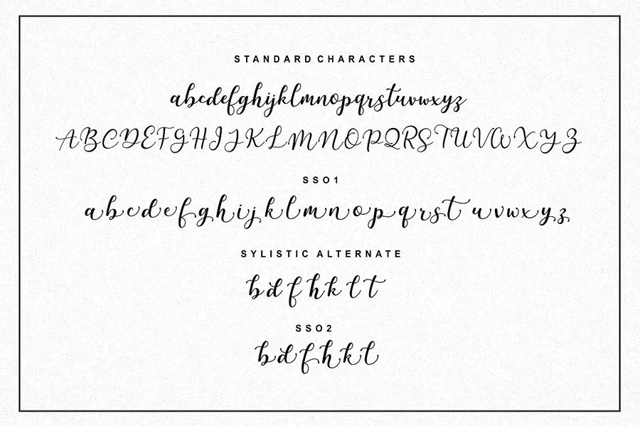 Free-Martinesse-Beautiful-Script-Demo-For-Designers-6