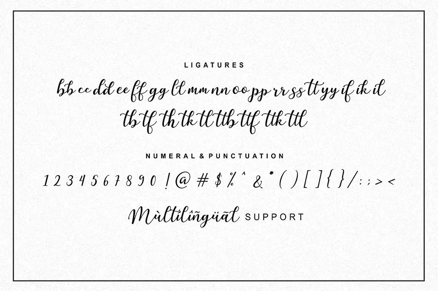 Free-Martinesse-Beautiful-Script-Demo-For-Designers-7