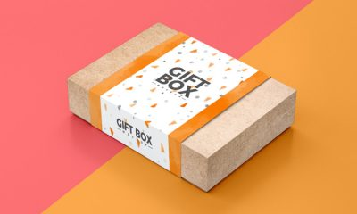 Free-Craft-Paper-Gift-Box-Packaging-Mockup-PSD-300