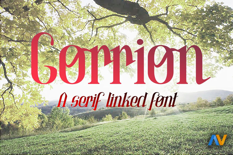 Gorrion-A-Serif-Linked-Font