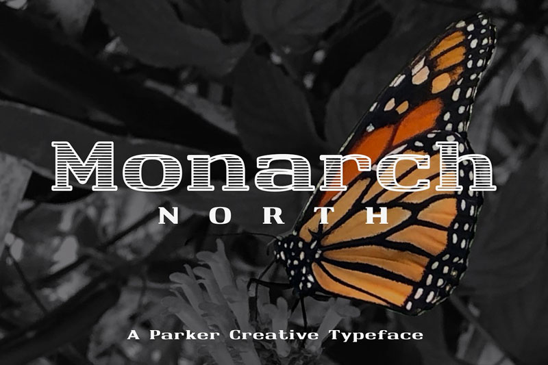 Monarch-North-Slab-Serif-Creative-Typeface