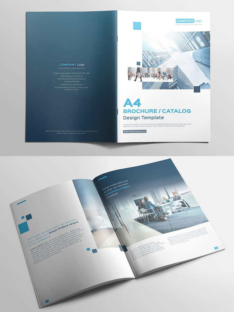 Multipurpose-Brochure-Catalog