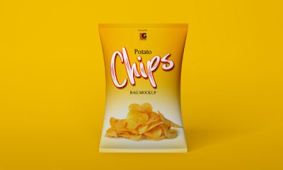 Free-Chips-Bag-Mockup-PSD-Vol-1-300