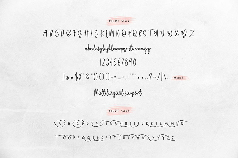 Free-Wildy-Sign-Signature-Font-4