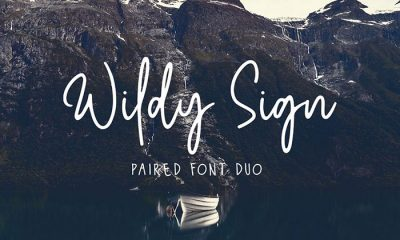 Free-Wildy-Sign-Signature-Font