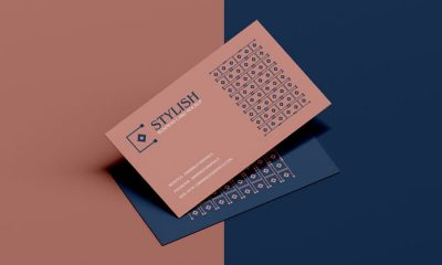Free-Stylish-Business-Card-Mockup-PSD-300