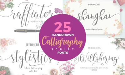 25-Hand-Drawn-Modern-Script-Calligraphy-Fonts
