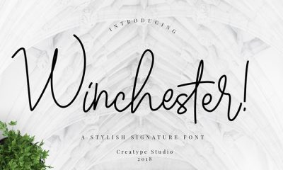 Free-Winchester-Script-Font-Demo-2018-For-Creative-Artists