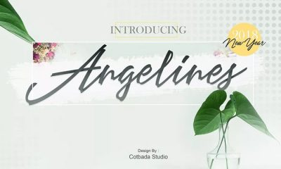 Free-Angelina-Script-Demo