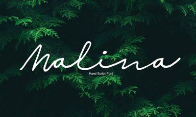 Free-Malina-Script-Font-Demo-2018
