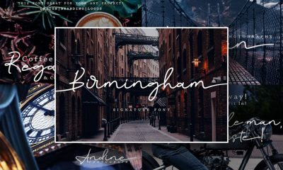 Birmingham-Signature-Script-Font-Free-Demo