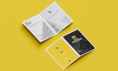 Free-PSD-Branding-A4-Bi-Fold-Brochure-Mockup-300