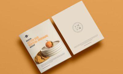 Free-PSD-Front-Back-Brochure-Mockup-300