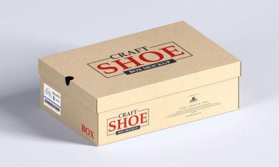 Free-Craft-Shoe-Box-Mockup-300